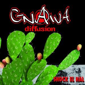 gnawadiffusion12