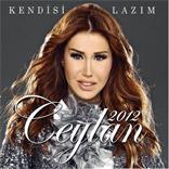 ceylan2012