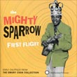 sparrow1st-flight