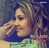 necla13