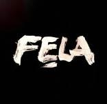 fela-complete-box