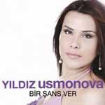 yildiz2011