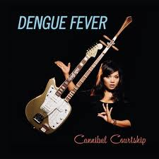 denguefever11