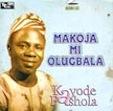 kayode-fashola5