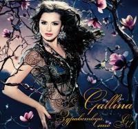 gallina10