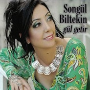 songul2013