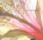 rumashsakit2012