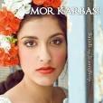 mor-karbasi11