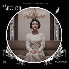 andien2014