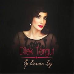 Dilek_Torgut2014