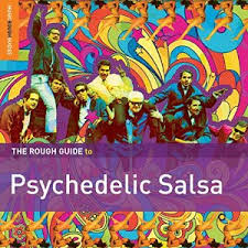 ROUGHGUIDE-TO-PSYCHEDELICSALSA